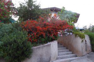 Der Tantraworkshop auf Korfu findet im abgelegenen Buddha Hall statt.